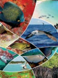 Panorama da Conservação dos Ecossistemas Costeiros e Marinhos no Brasil.